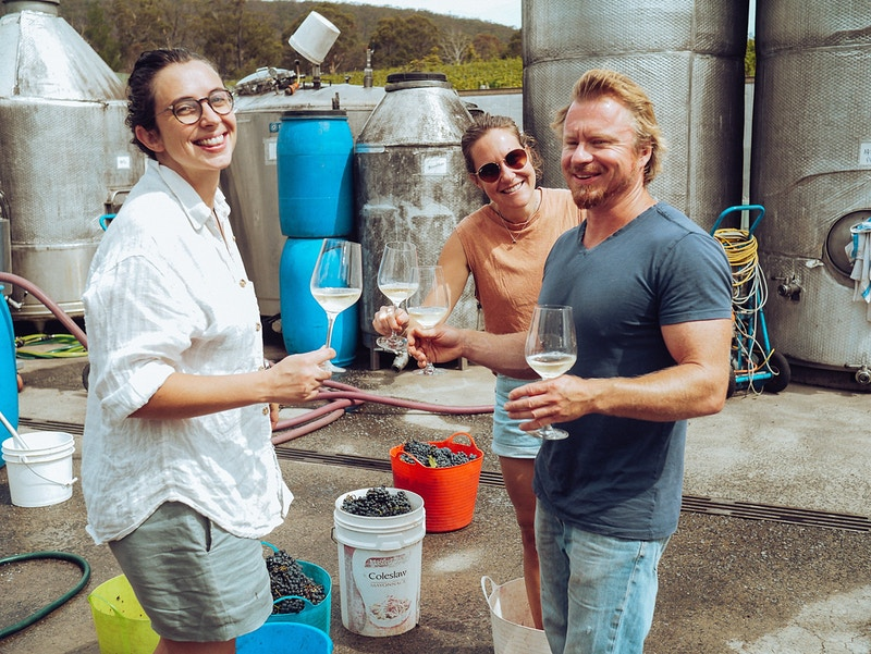 Making Vino - Elle Hughes
