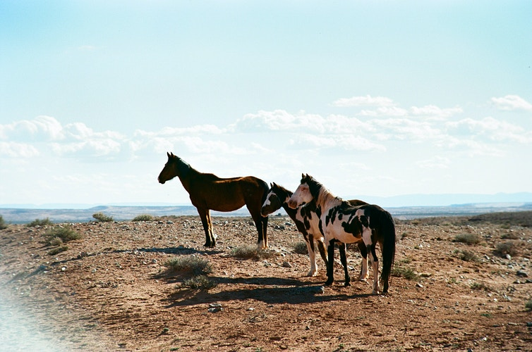 American Southwest - Ethan Gulley | Los Angeles Photographer