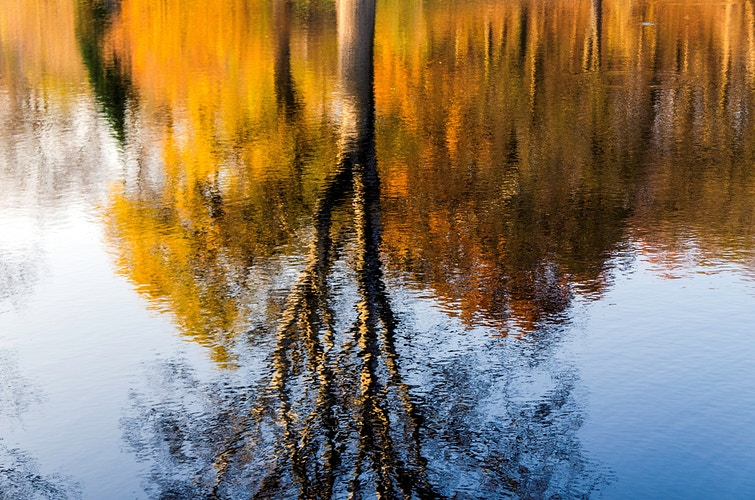 Autumn reflection in the water - Elle Lens
