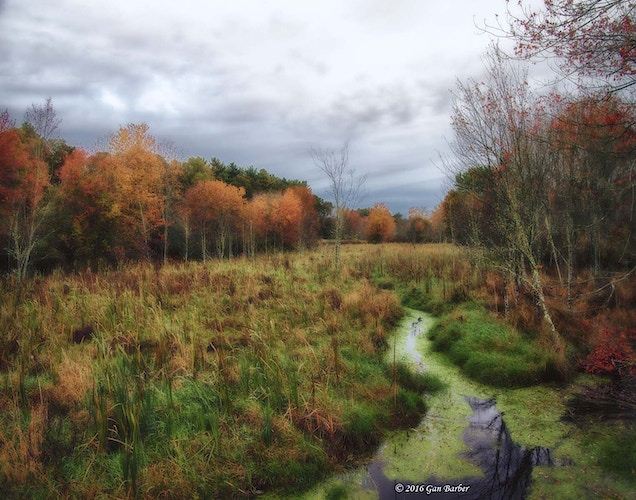Autumn on WIlkie's Farm - Gan Barber Fine Art Photographs
