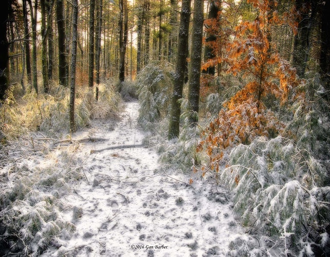 First Snow - Gan Barber Fine Art Photographs