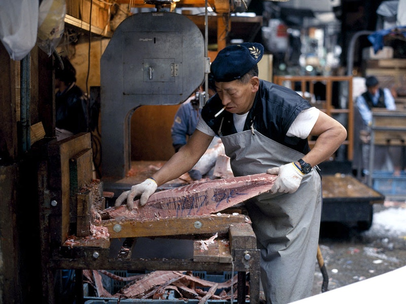 SLICING TUNA. IT'S ALL ABOUT THE FISH - GRAHAM GUY BARRATT