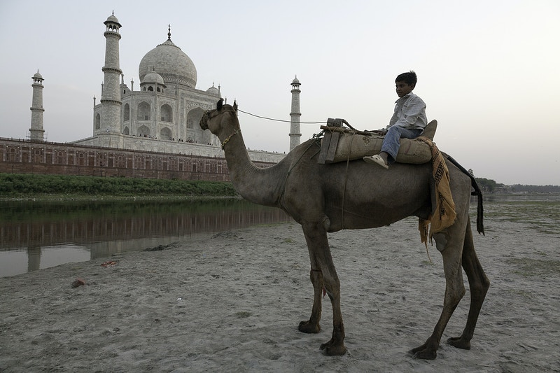 ACROSS FROM THE TAJ - GRAHAM GUY BARRATT