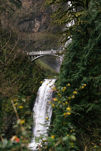 Washington State - Hailey Magoon Photography