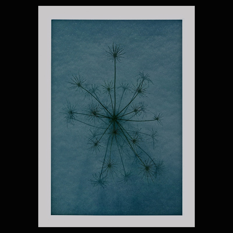 Voices Of The Winter Hearth 2015 - Hasland Graphica