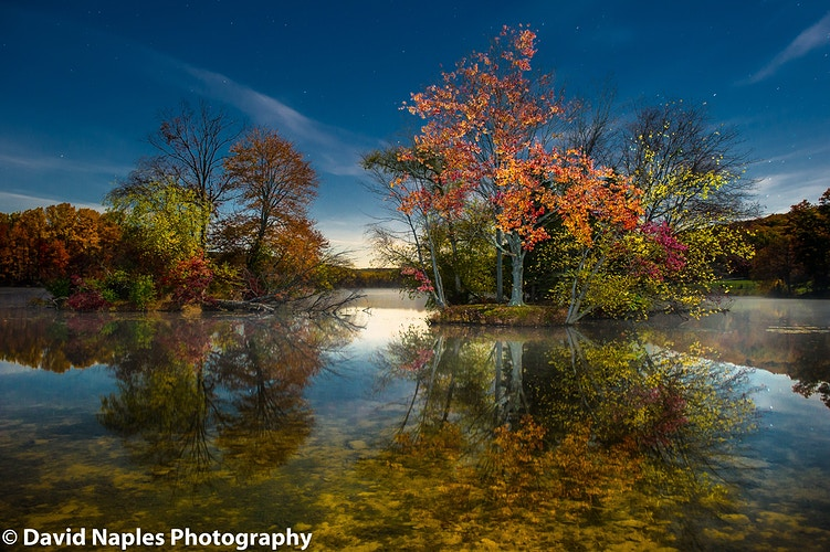 Nature And Landscape Photography - David Naples Photography