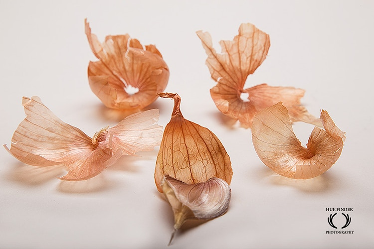 Onion Peel Scene - HUE FINDER PHOTOGRAPHY