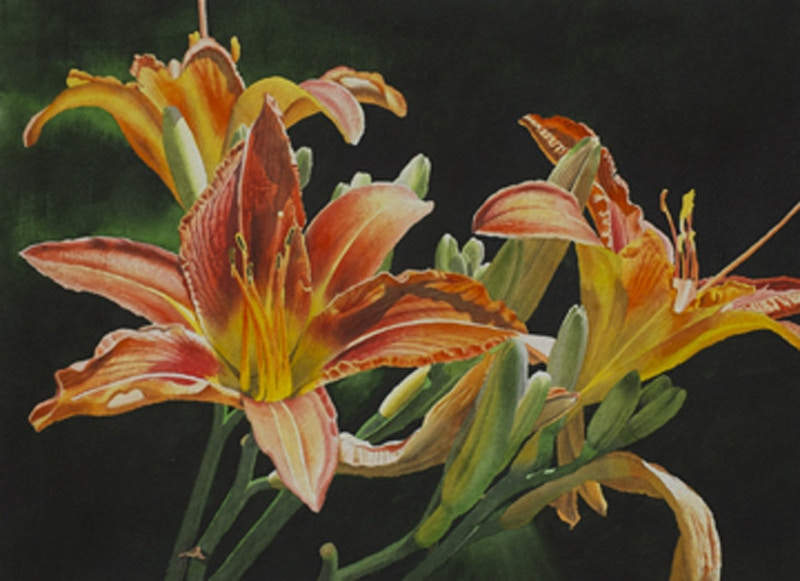 Daylilies - Hunter Gallery of Fine Art, Grafton, VT