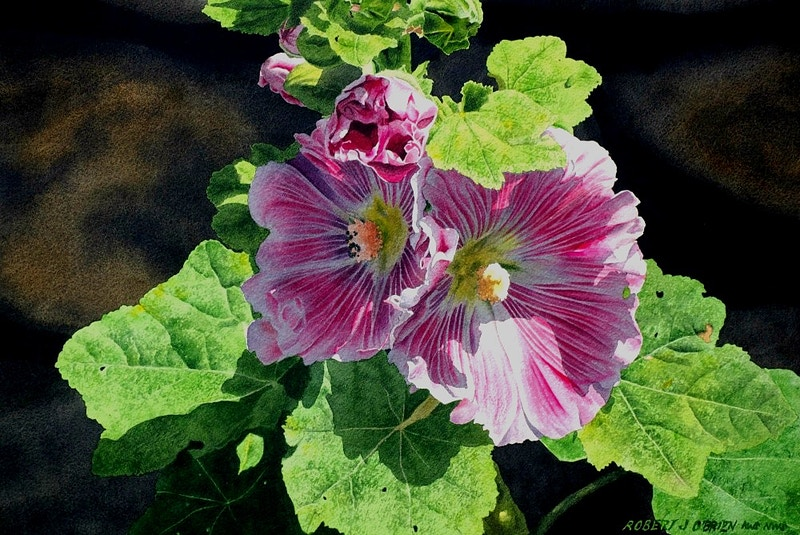 Hollyhock Light - Hunter Gallery of Fine Art, Grafton, VT