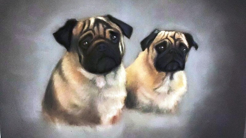 Two Pugs - Hunter Gallery of Fine Art, Grafton, VT