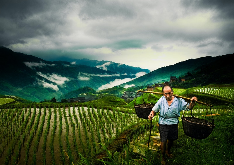 Landscapes China - IAN BREWER