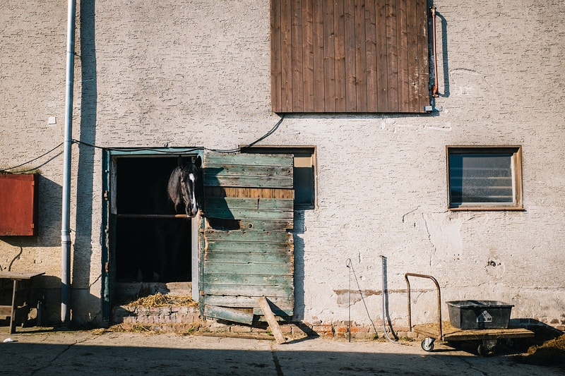 The Stables - kelly kline
