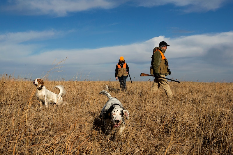 Hunting In Progress - James Wooldridge Photojournalism