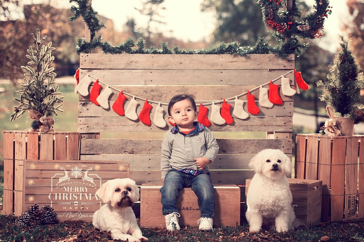 2015 Holiday Outdoor Session - New York, New Jersey and Connecticut Photographer | Jesse Rinka