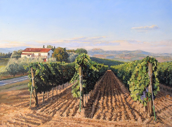 Vineyard - JoeRemillard