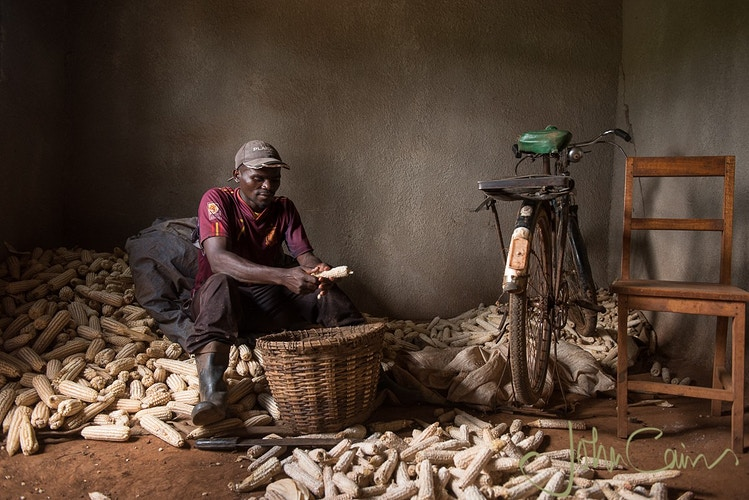 Anastase shells maize in the house he bought from the sale of his crops. Small loans have enabled him to increase his crop yields enormously. - John Cairns Photography