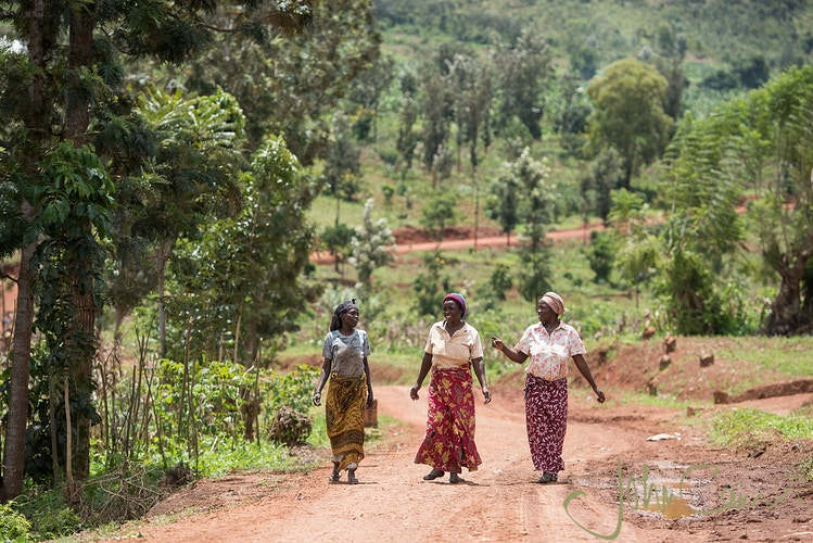Micro Finance, Rwanda - Women return home from the co-operative farm after a morning of hard work in the sun. - John Cairns Photography