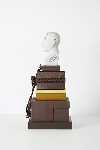 Phrenological Modules (Gucci), 2014 - John Y. Wind | Artist