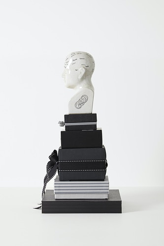 Phrenological Modules (Y3), 2014 - John Y. Wind | Artist