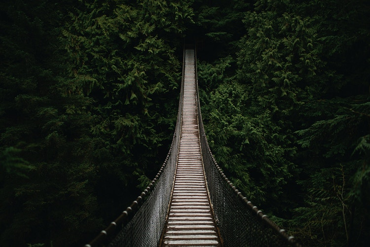 Lynn Canyon Suspension Bridge II - Jordan Voth | Seattle Wedding & Portrait Photographer