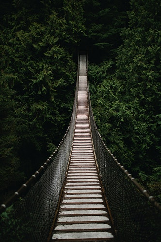 Lynn Canyon Suspension Bridge - Jordan Voth | Seattle Wedding & Portrait Photographer