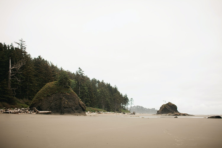 La Push, WA II - Jordan Voth | Seattle Wedding & Portrait Photographer