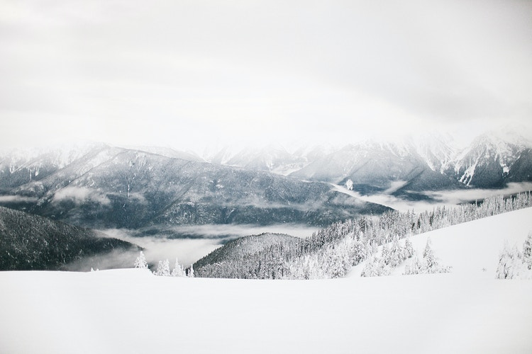 Snowy Hurricane Ridge - Jordan Voth | Seattle Wedding & Portrait Photographer