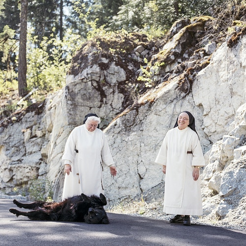 Queen Of Peace For Coast Mountain Culture - KARI MEDIG