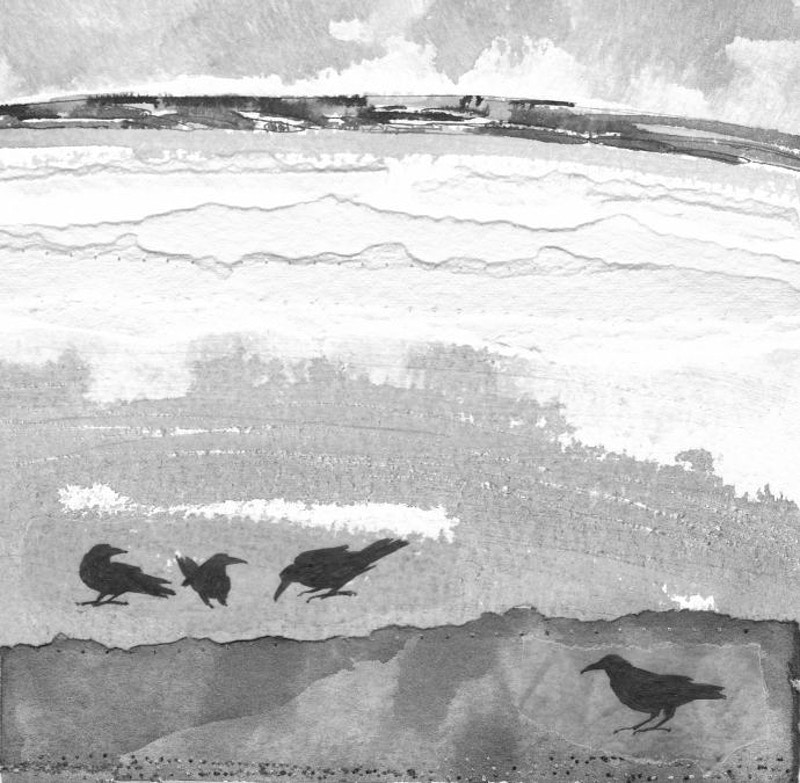 crows in the high field - KATE WELLS artist
