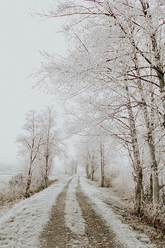 Snow covered road - Katie Ruther