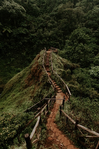 Stairway to heaven - Katie Ruther