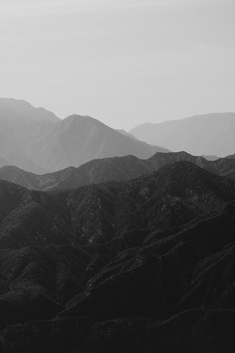 Angeles Forest - Katie Ruther