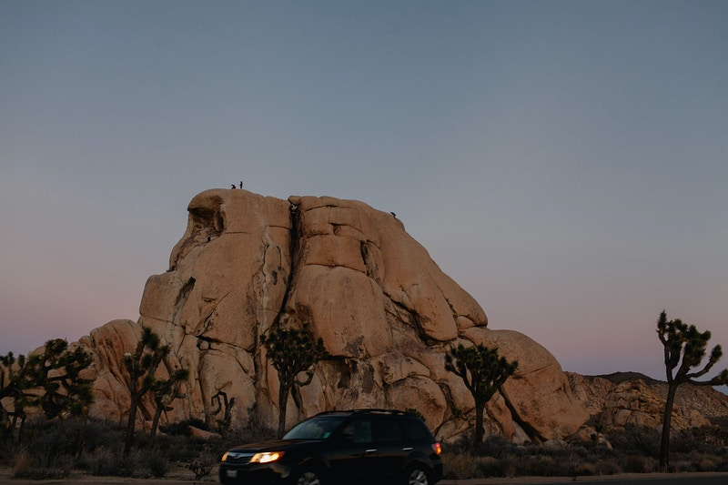 Joshua Tree Engagement - Katie Ruther