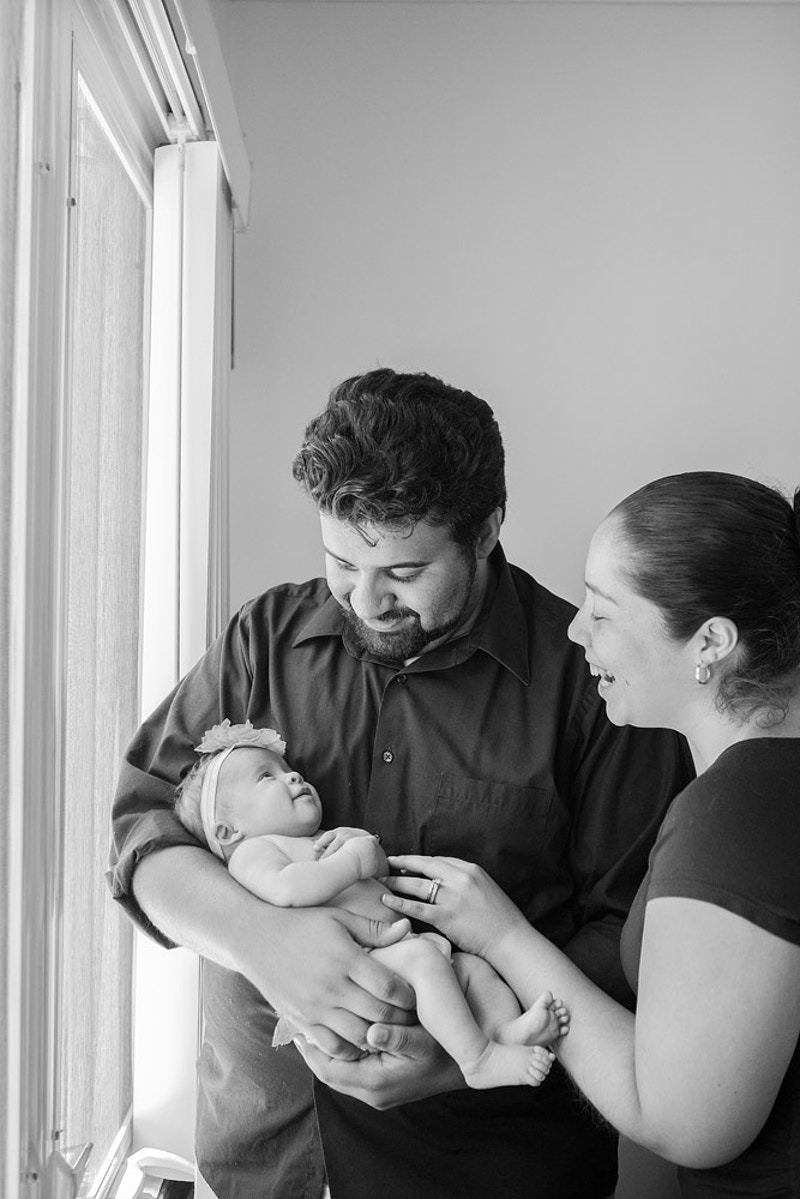 The Roche Family - Lisa Brown Photo    New York Wedding & Lifestyle Photography