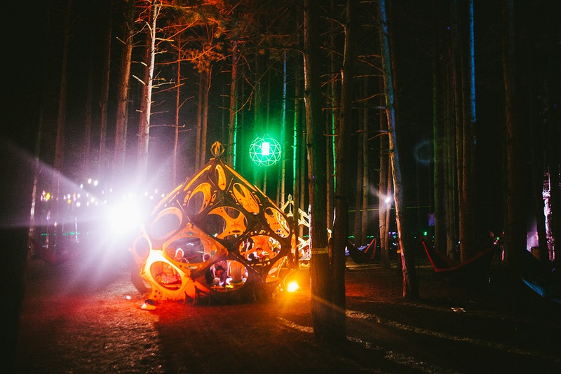 Electric Forest - Mantas Ivanauskas Photography