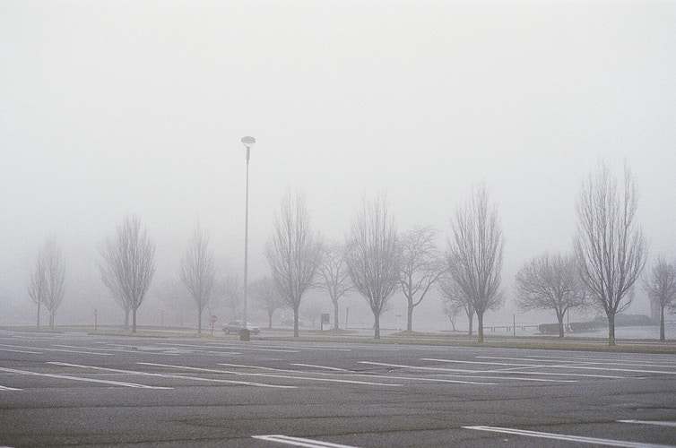foggy lot - Margaret Murphy Photography