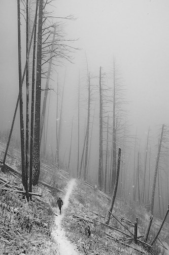 Foggy Winter Hiking, Kootenay NP - Maur Mere Media