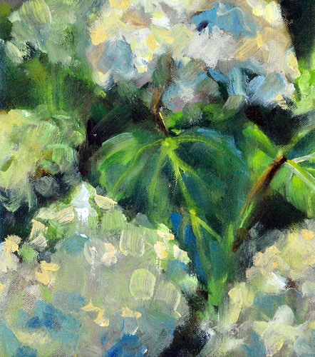 Hydrangeas in the Catskills - Meghan Taylor Art