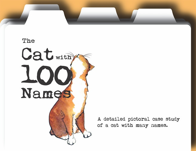 The Cat With 100 Names - Meghan Taylor Art