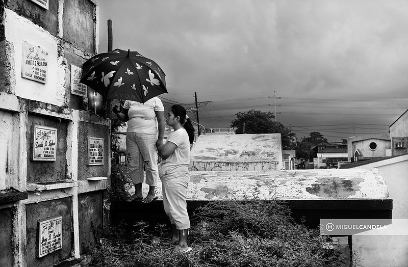 The Cemetery Of The Living - Miguel Candela  