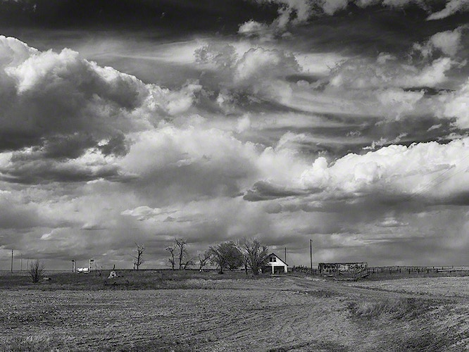 West of Dodge - Michael E Pointer Fine Art