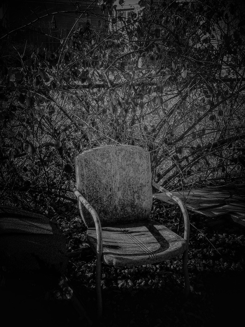 Winter Chair - Michael E Pointer Fine Art