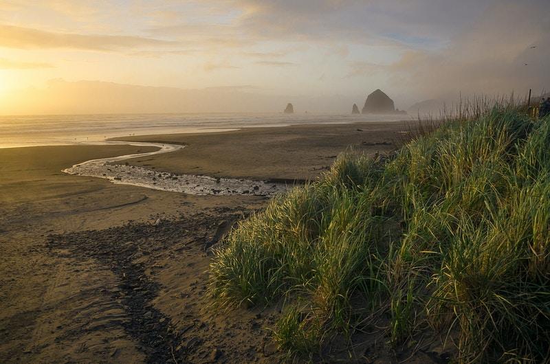 Cannon Beach - Matthew Tangeman | Adventure Photography