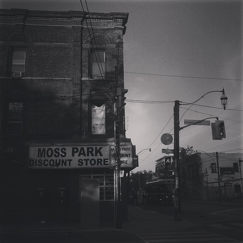 Moss Park II - Queen and Sherbourne - Ardean Peters | Toronto Photographer | Portraits, People & Light