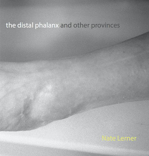 The Distal Phalanx Selections 2017 - Nate Lerner