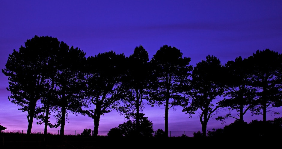 Throckley Purple Sunset - Northbound Photography