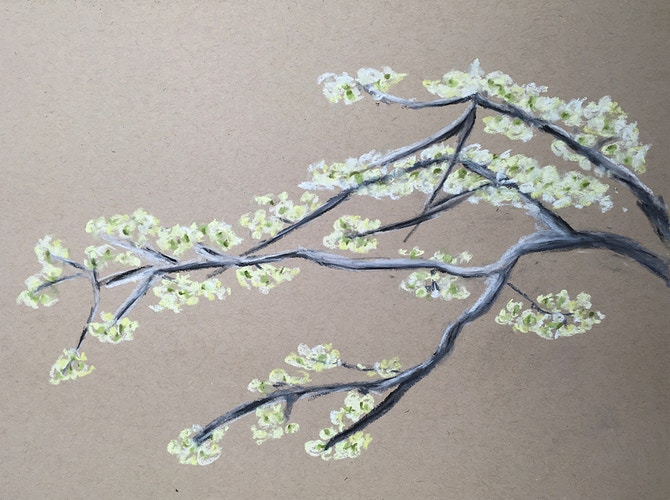 Dogwood Branch in Spring - Penney De Pas