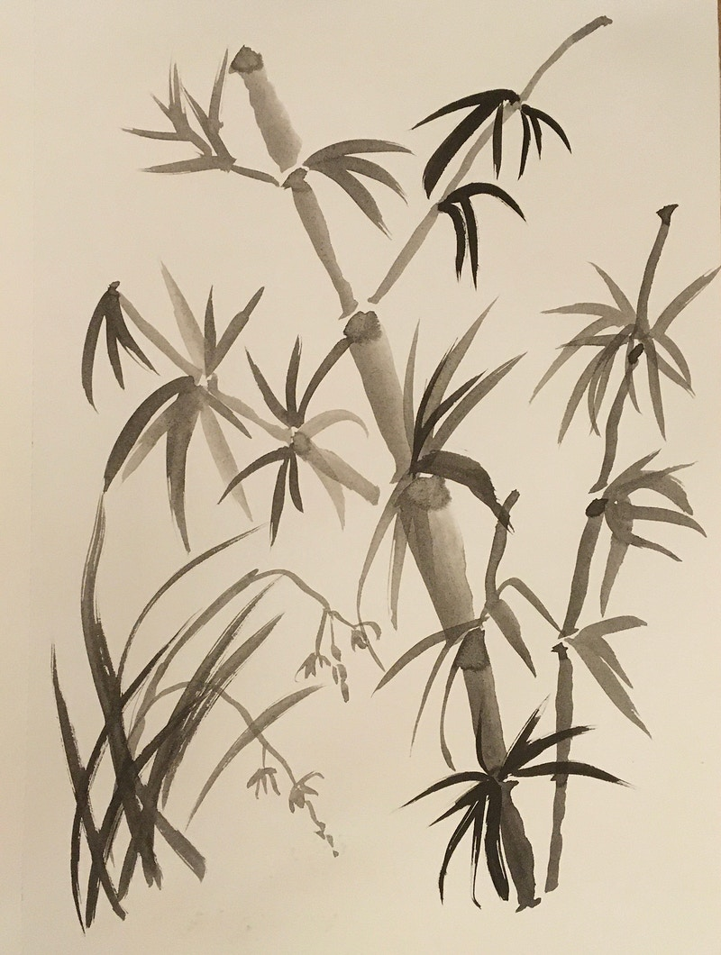 Bamboo & Wild Orchid (B&W Ink) - Penney De Pas