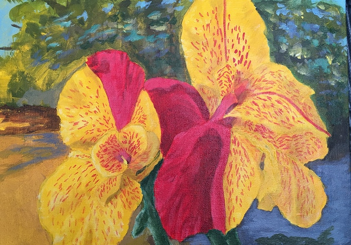 Double Red & Yellow Cannas - Penney De Pas