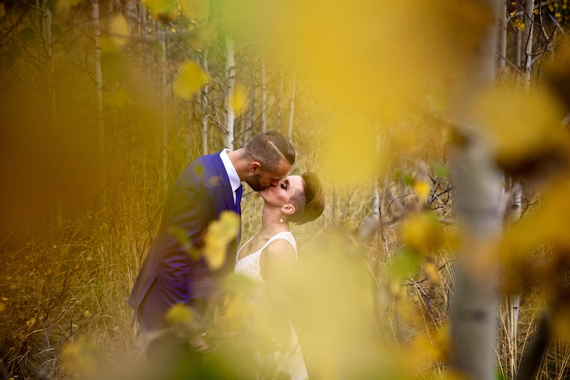 Wedding Gallery Ii - PMG Image